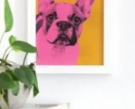 Make your own pop art pet portrait