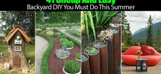 Cheap and Easy DIY Projects